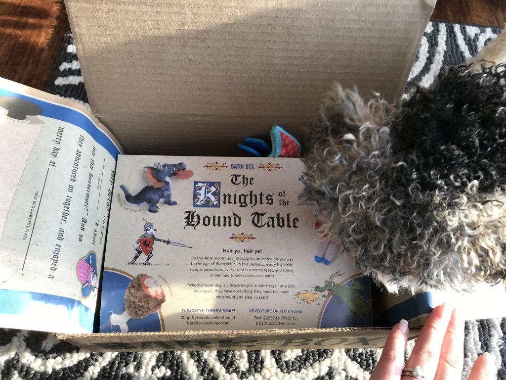 Knight of the Hound Table BarkBox