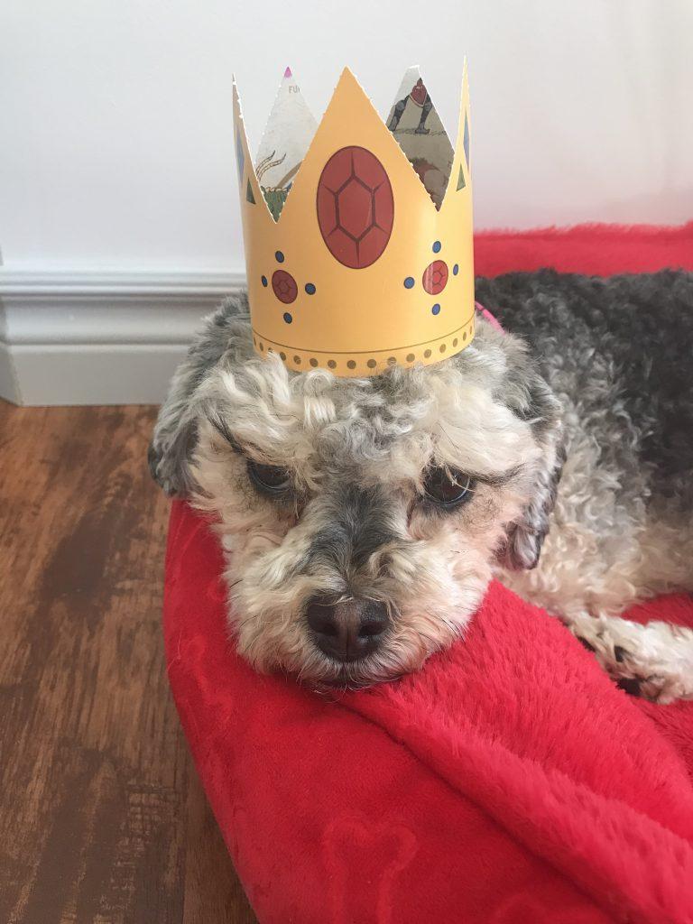 Marlee looking very unimpressed about wearing her princess crown.