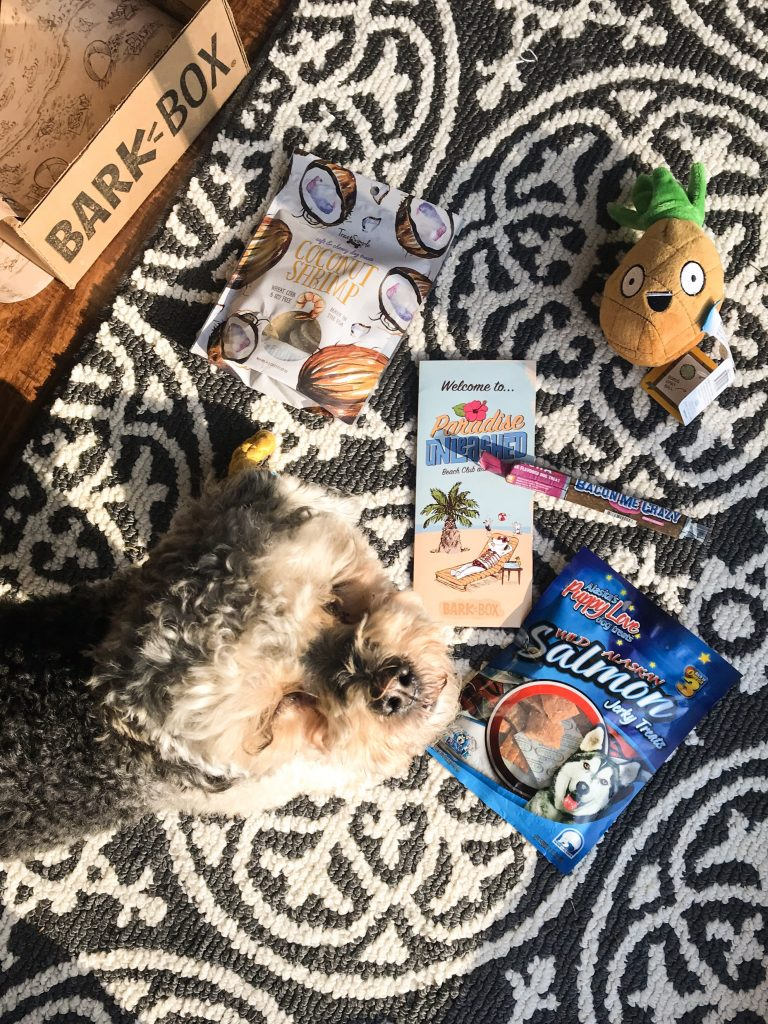 February BarkBox Review 2018- Marlee with her BarkBox items