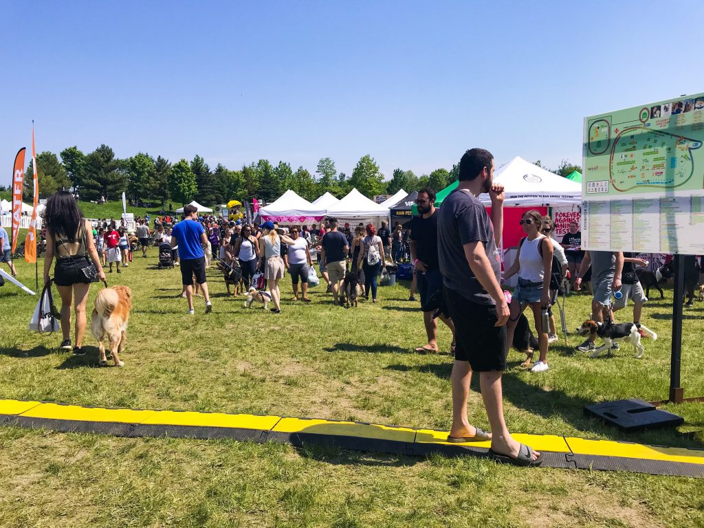 Our Trip to Woofstock - North America?s Largest Festival for Dogs Information Booth