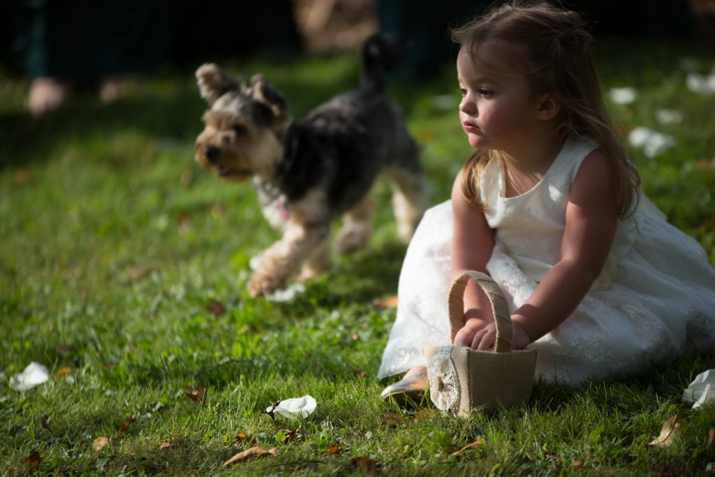 5 Ways to Include Your Dog in Your Wedding