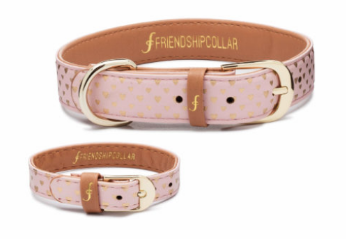 Mother's Day Gift Guide for Dog Mom - Friendship Collar