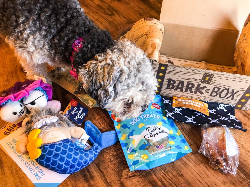 April BarkBox Review - Marlee and her April BarkBox